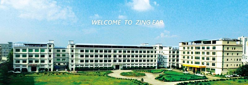 Zing Ear Micro Switch