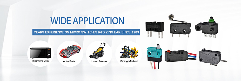 micro switch types