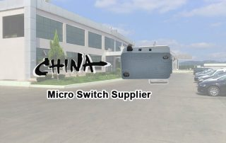 china micro switch supplier 2