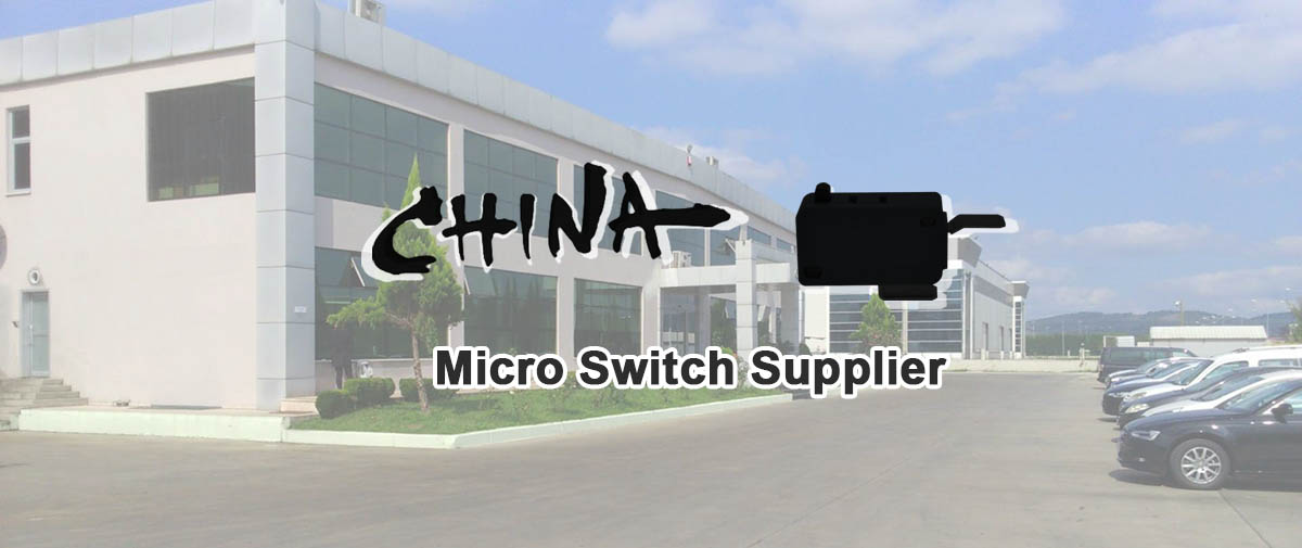 micro switch supplier